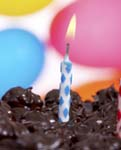 Work Anniversary Cupcake